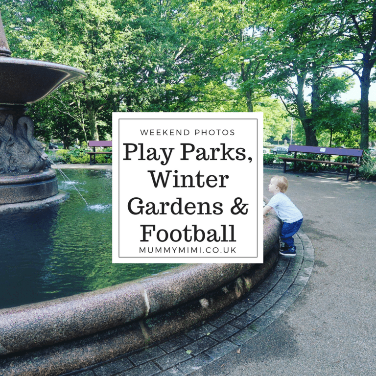 Weekend Photos & Vlog | Play Parks, Winter Gardens & Football